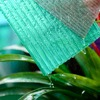 Grade A quality 4mm-10mm twin wall colored polycarbonate panel for greenhouse building material