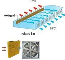 pad and fan greenhouse cooling systems