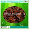 /p-detail/china-org%C3%A1nica-de-an%C3%ADs-estrella-de-los-precios-300005326131.html