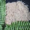 new crop dehydrated garlic granules granule garlic