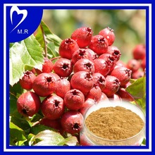 factory supply hawthorn fruit extract Isoflavone