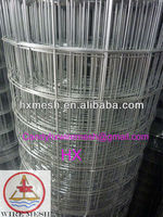 galvanized bird cage wire mesh