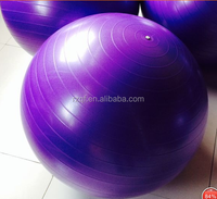 High Quality Anti -burst PVC Gym Equipment Exercise Ball With Foot Pump