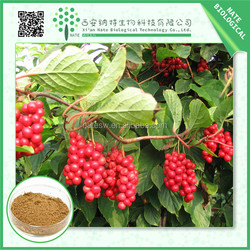 Latest Style High Quality schisandra berries extract with 1%-5% schisandrin