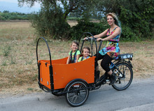 CE approved cheap electric tricycle used/opened electric trike bike reverse cargo tricycle