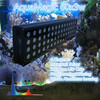 Meanwell driver XTE CREE LED aquarium lighting with remote controller