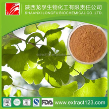 Manufacturer sales ginkgo biloba extract 24/6% water soluble5%