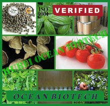 PROMOTION! CERTIFICATED bottom price Stevia 90% 91722-21-3