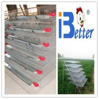 BT Factory new design high quality layer quail cages for sale in kenya farm