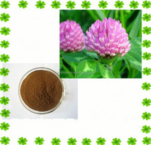 Natrual Women Care Pure Red Clover Extract Powder