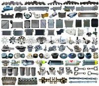 Engine Parts for Truck Isuzu Hino Nissan UD Mitsubishi Fuso Mercedes Benz Volvo Scania