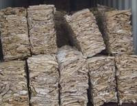 Wet Salted Raw Cow Hides / Dry Salted Goat & Sheep Skins and Donkey Hides
