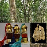 Pure Agarwood/Oudh/Oud Oil - Grade A