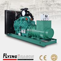 800 kw diesel genset for sale 1000 kva generator manufacturer 1000kva diesel generator