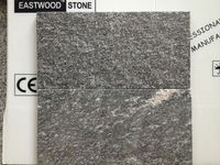 China jet mist granite with cheap price