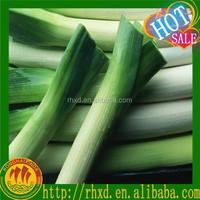 2015 Chinese new crop fresh shallot onion