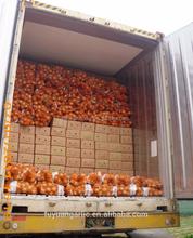 2015 newly Jinxiang factory onion