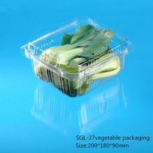 2015 Hot sale popular Disposable clamshell packaging
