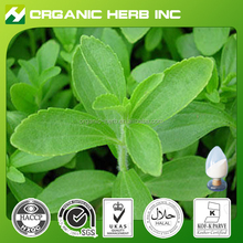 Competitive Price of Stevia Leaf Extract90%Stevioside
