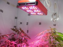 led grow light 2015 High Quality 450W 6000Lumens CE&ROSH Approved Shanghai LED Light supplier