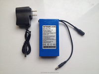 DC 12V Rechargeable Lithium ion Battery Portable Small Battery Pack for Led Strips/Christmas Light