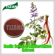 high quality Radix Salviae Miltiorrhizae Extract with best price