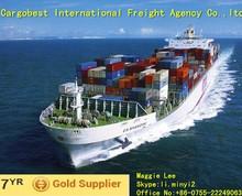Professtional Shipping from Ningbo/Qingdao/Guangzhou/Xiamen/Shenzhen/Shanghai China to Hungary