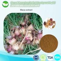 Herbal long time sex medicine maca extract power