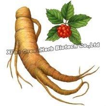 Natural Food Supplement 80% Ginsenosides