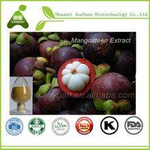 Natural Mangosteen Juice Powder Mangosteen Powder Bulk