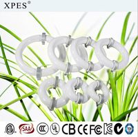 XPES 40W-300W induction lamp for plant growing on Foshan