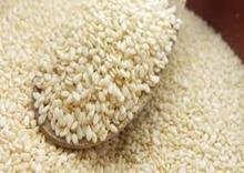Indian origin Hulled Sesame Seeds/sesame seeds