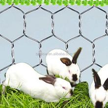 "1/4"",3/4"" Cheap Chicken Wire /Rabbit wire Mesh /Galvanised Hexagonal Wire Mesh"