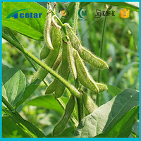 Health supplement nuritions Anti-tumor effect organic soybean powder extract