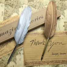 Beautiful Feather Writing Quill Pen