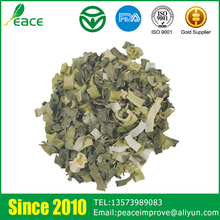 China Manufacturers Typical Green Flavor Dehydrated Fresh Onion