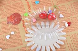 color chart nail polish display board