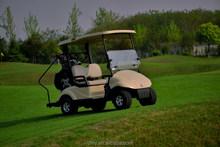 DFEV 2 seater golf cart with caddie board