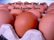 TODAY CURRENT PRICE INDIA; ONION, POTATO, CHICKEN EGG, ARECANUT, DRY CHILLI, VEGETABLE FRUIT LIST, SPICES TURMERIC CHILLI PEPPER