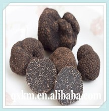 Truffles Product Type and Wild Source Black Truffle Mushrooms,Chinese Black Tuber Sale