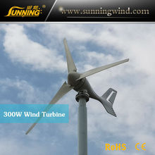 2015 Three-phase AC low price 300w wind turbine