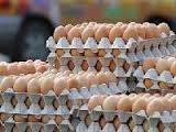 Fresh Table Chicken Eggs Brown and White