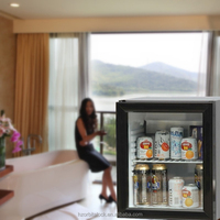 mini cooler, energy drink refrigerator