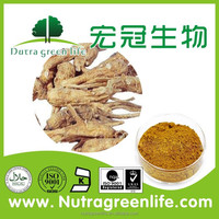 Angelica Extract powder/angelica sinensis extract/ Dong Quai Powder