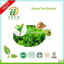 98% Water soluble Green Tea Extract powder/ Green Tea Powder/ green tea extract