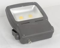 Engineering outdoor lighting CE RoHS 50W-100W led landscape lamp high lumen super brightness LED light