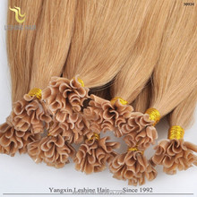 China Supplier Factory Wholesale 100% Tangle Free u nail tip hair extention