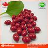 OEM private label acai berry capsule