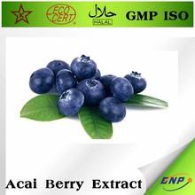 health food organic acai berry capsule