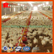 new automatic design modern chicken farm of poultry equipment